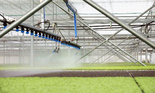 Cách tăng năng suất chất lượng tại nông trường 'siêu hiện đại' bậc nhất Việt Nam
