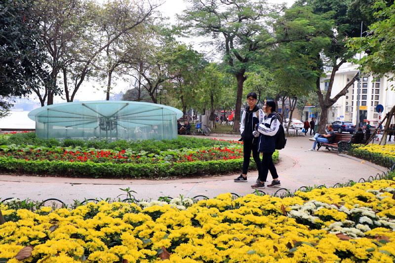 Các bạn trẻ dạo bước bên những con đường hoa rực rỡ.