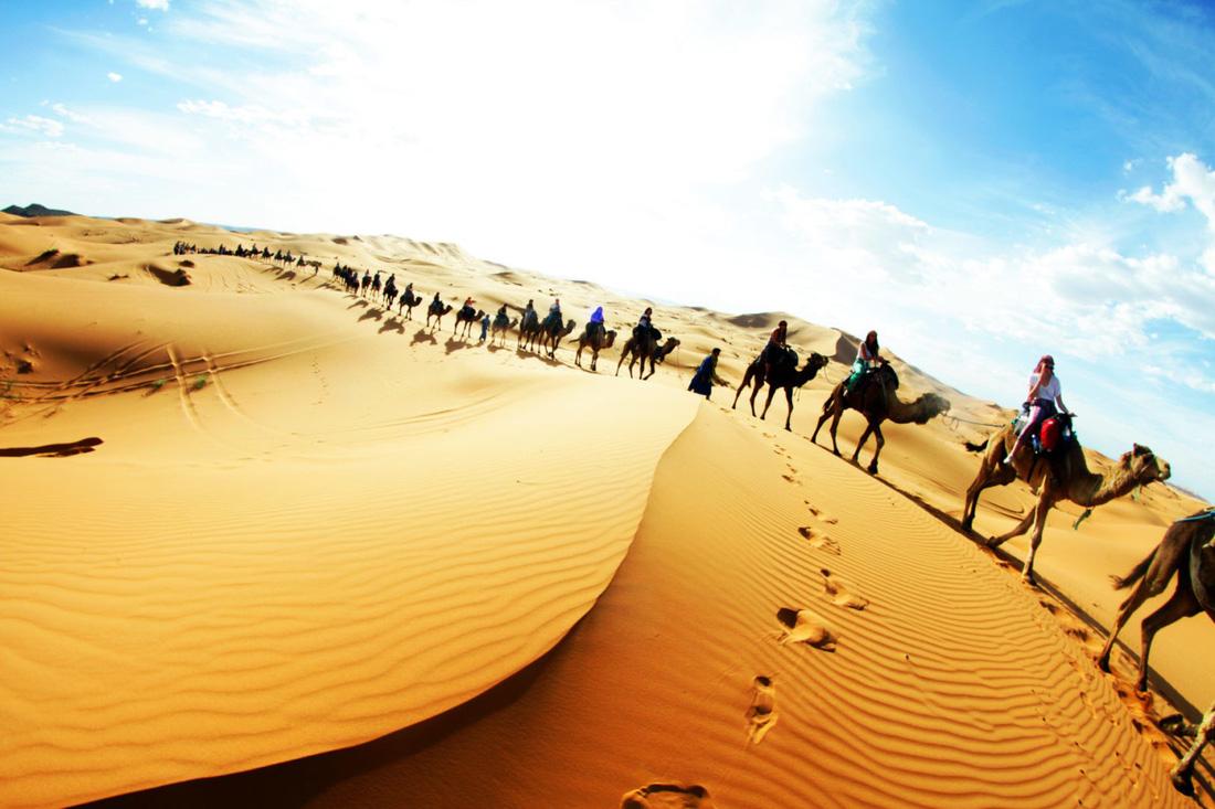 Sahara là sa mạc lớn nhất thế giới, diện tích hơn 9.000.000 km2, bao phủ hầu hết khu vực Bắc Phi. Phía Bắc Sahara giáp biển Địa Trung Hải, giáp thung lũng sông Niger ở phía Nam, giáp biển đỏ ở Đông và giáp Đại Tây Dương về phía Tây.  Ngay cả trong môi trường khắc nghiệt với nhiệt độ ban ngày trên 50 độ C, Sahara vẫn có một vẻ đẹp vô song.  Các thung lũng khô cằn, núi đá, mỏ muối, cồn cát, đồng bằng, cát sỏi và ốc đảo của sa mạc đều rất độc đáo và tuyệt đẹp.  Nhiều khu vực trong sa mạc được đầu tư thành điểm cắm trại, ngắm sao trời.