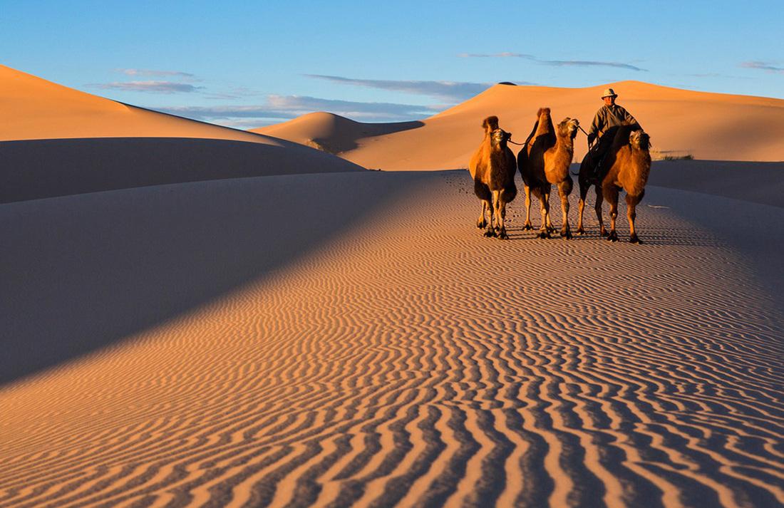 Gobi là sa mạc lớn nhất ở châu Á.  Cảnh quan đặc trưng của Gobi là những tảng đá trơ trụi nằm xen giữa những bụi cỏ nhỏ. Sa mạc Gobi không có nhiều cồn cát như các sa mạc khác.  Sa mạc Gobi có 5 khu vực sinh thái chính với các đặc điểm địa lý, cảnh quan khác nhau như sỏi đá, cao nguyên núi đá, đồng cỏ, thảo nguyên, hang động, cùng những cánh đồng hoang khô cằn.  Sa mạc Gobi cũng có ý nghĩa lịch sử rất lớn khi là nơi mà Con đường tơ lụa đi qua.  Dọc theo tuyến đường này là một loạt các hang động Phật giáo hàng nghìn năm tuổi nằm ở rìa phía nam sa mạc Gobi.
