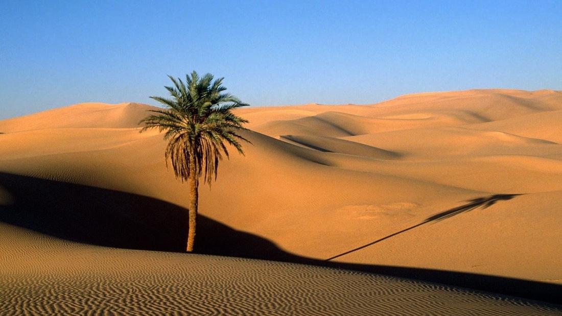 Hoang mạc Ả Rập là một vùng hoang vu rộng lớn tại Tây Á, gần như toàn bộ bán đảo Ả Rập với diện tích lên tới 2,33 triệu km².  Phần lớn diện tích của sa mạc nằm ở Ả-rập Xê-út, trải dài từ Yemen đến vịnh Ba Tư và từ Oman đến Jordan, Iraq.  Khí hậu đặc trưng của sa mạc Ả-rập là những ngày nóng và đêm lạnh. Vào mùa hè, nhiệt độ có thể cao tới 55 độ.  Phần lớn nhất của sa mạc Ả-rập là Rub