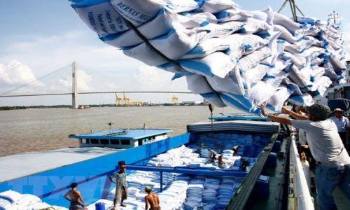 Dự báo về thị trường gạo 6 tháng cuối năm 2021