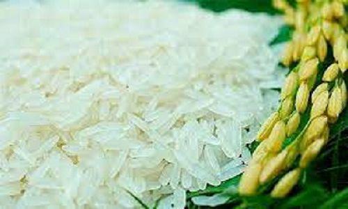 Dây chuyền chế biến gạo như thế nào để tạo ra sản phẩm đạt chất lượng?